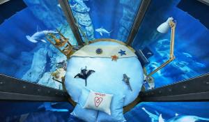 Aquarium de Paris oferece pernoite com tubarões pelo Airbnb