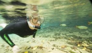 MT lança série de lives sobre retomada do setor turístico nesta terça (28)
