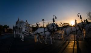 Castelo da Cinderela agora pode ser cenário de casamentos na Disney; saiba como