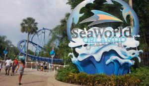 Coronavírus: SeaWorld fecha todos os seus parques nos EUA