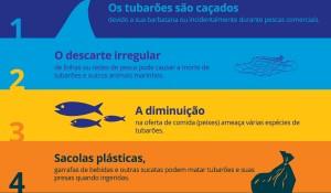 SeaWorld divulga infográfico sobre os perigos que os tubarões enfrentam na natureza