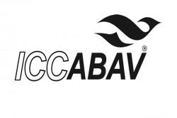ICCABAV promove terceira web serie sobre gestão