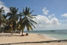 República Dominicana lança nova campanha após passagem de furacão