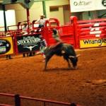 A experiência em Fort Worth incluiu a visita a um rodeio