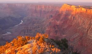Veja 14 curiosidades sobre os Parques Nacionais dos EUA