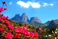 Nova Friburgo terá festival gastronômico para fomentar turismo na serra