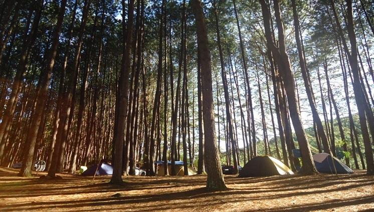 Acampamentos turísticos tiveram crescimento de 42% - Crédito: Divulgação/Parque da Cachoeira