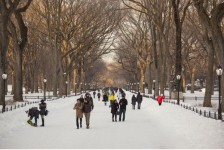 Começa edição de inverno da NYC Broadway Week