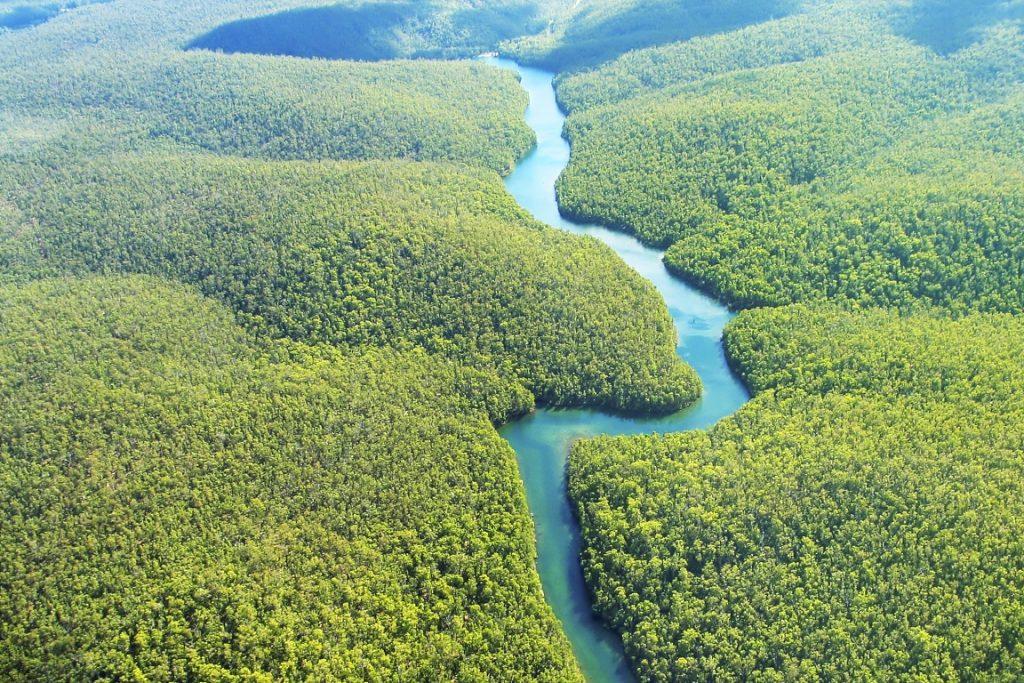 Fotos rio amazonas colombia 66