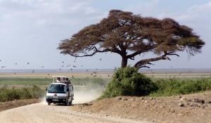 Across tem novo programa de Safári no Quênia