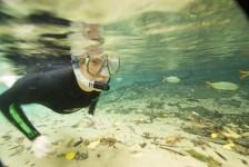 5 lugares para fazer ecoturismo no Brasil