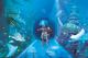 Aquário Sea Life em Orlando oferece tour pelos bastidores