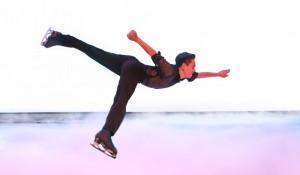 Busch Gardens tem novo show no gelo e áreas temáticas