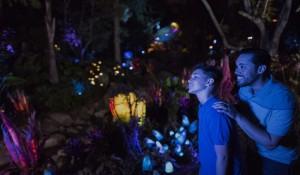 Disney: confira o que tem de novo nos parques em 2017