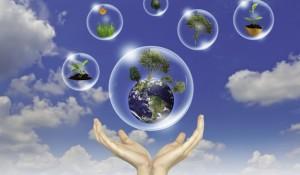 Conotel debate conceito de sustentabilidade no uso da energia