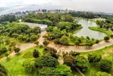 Parque do Ibirapuera recebe mais de 11 mil pessoas no primeiro dia de reabertura