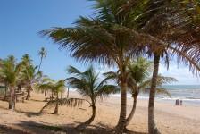 Bahia lidera o crescimento do Turismo no Brasil, segundo o IBGE