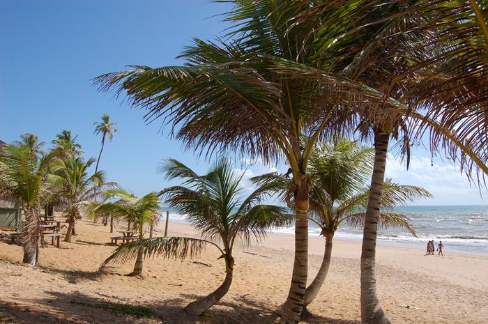 Praias nordestinas estão entre os destinos preferidos dos brasileiros no verão
