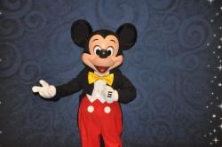 Disney faz treinamento para agentes e operadores brasileiros em Orlando; veja fotos