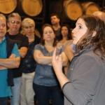 Todos prestam atenção a explicação de como fazer vinho