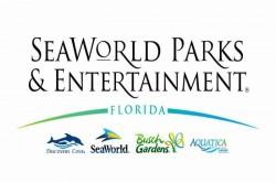 Coronavírus: Mesmo fechado, SeaWorld continua resgatando e cuidando dos animais