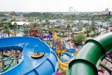 Aquatica Orlando celebra 10 anos