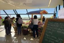 Aeroporto de Brasília faz ação no Dia das Namorados