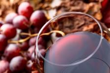 Cap Amazon promove 1ª edição do Invino Wine Travel Summit