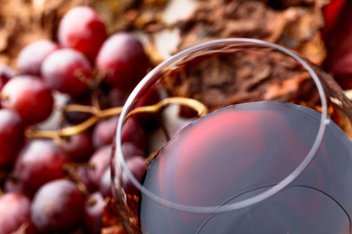 INVINO Wine Travel Summit