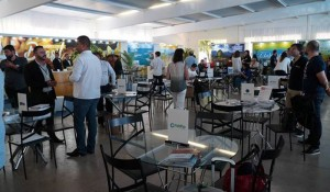 Com presença de autoridades, Experiência Braztoa encerra ciclo itinerante em Brasília