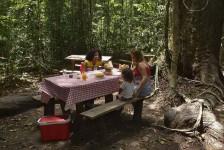 ICMBio recomenda vacina da febre amarela a visitantes de parques nacionais