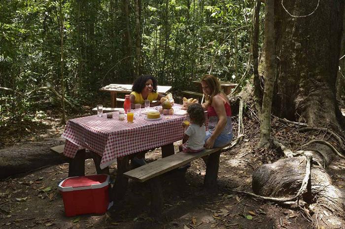 Serviços de apoio ao turista incluirão lanchonete, loja de conveniência e transporte dentro do Parque Nacional Pau Brasil (BA). Foto: Acervo ICMBio