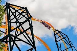 Confira detalhes da Tigris, nova atração do Busch Gardens