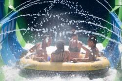 Conheça Ray Rush, nova atração do Aquatica Orlando; vídeo