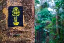 Rede Trilhas: Brasil já tem 2 mil km de trilhas de longo curso sinalizadas