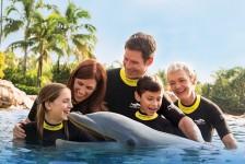Discovery Cove anuncia promoção exclusiva Blue Friday no Brasil