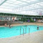 Jungle Pool Lounge é a piscina interna do MSC Seaview
