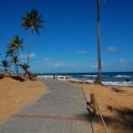 Banquinhos estratégicos para observar a beleza do litoral