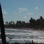 Orla da Costa acompanha todo o litoral de Costa do Sauípe
