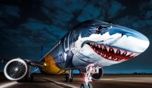 Veja 11 animais que já estamparam fuselagem de aviões pelo mundo