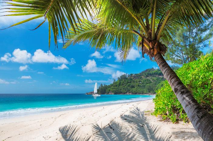 O aumento no número de turistas nesse inicio de ano gerou uma receita de aproximadamente USD 800 milhões