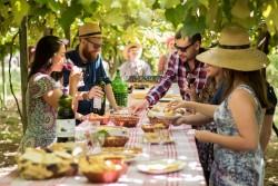 Festival de vinícolas de Santa Catarina tem início em março