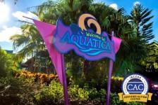 Aquatica Orlando recebe certificado em autismo