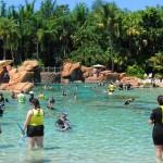 Discovery Cove também dá a oportunidade para os clientes fazerem snorkeling