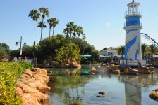 Coronavírus: SeaWorld manterá parques fechados por tempo indeterminado