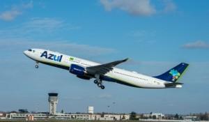 Azul passa a transportar animais de estimação em voos internacionais