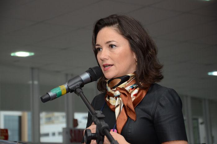 Flavia Didomenico, deixou a presidência da Santur