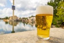 Seaworld oferecerá cerveja grátis durante o verão