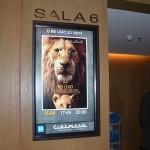 """Exibição da sessão especial de """"O Rei Leão"""" foi um convite da R11 Travel"""