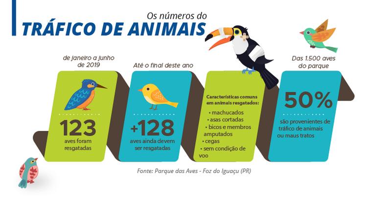 Tráfico de Animais (Infográfico: Agência Brasil)